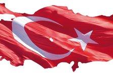 Avrupa'da Türk vatandaşları için akıl almaz açıklamalar