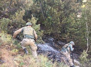 Bitlis'te 1'i 'Yeşil listede' bulunan 2 PKK'lı öldürüldü