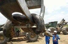 400 kilo ağırlığında 10 metre boyunda!