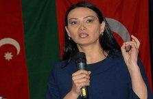 Azerbaycan'dan destek: Türkiye'ye karşı yapılmış...