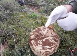 Bingöl'de toprağa gömülü 3 patlayıcı bulundu