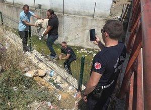 Su kanalına düşen köpek zabıta ekiplerinin gerçekleştirdiği operasyonla kurtarıldı