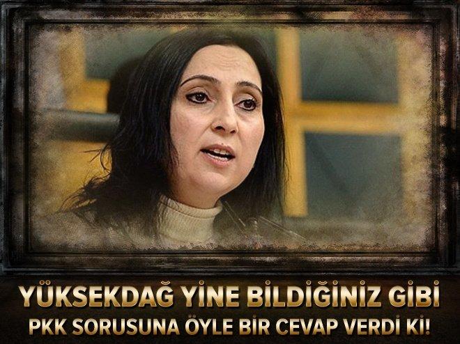 Yüksekdağ'dan skandal PKK savunması