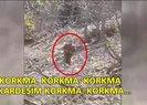 PKK'LILARIN TESLİM OLDUĞU AN!