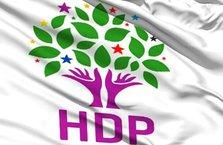 HDP'li il eş başkanları tutuklandı