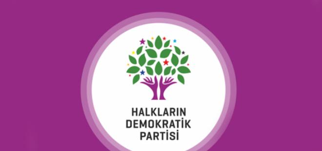 HDP'Lİ İL BAŞKANI TUTUKLANDI