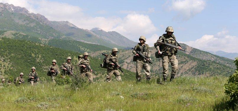 TSK: 78 PKK'LI ÖLDÜRÜLDÜ