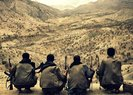 ÖLDÜRÜLEN 2 PKK'LI GRİ LİSTEDEYMİŞ!