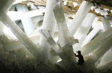 Bilim insanları 50 bin yıllık mikrop buldu