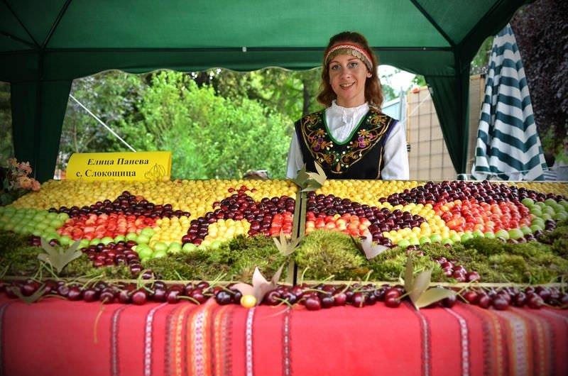 Bulgaristan'da kiraz bayramı