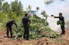 PKK'nın can damarına ağır darbe