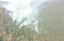 Teröristler kaçarken orman yangını çıkardı