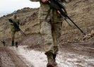 PKK'NIN ERCİŞ SORUMLUSU ÖLDÜRÜLDÜ