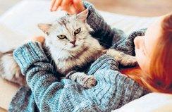 Evcil hayvanlar ömrümüzü uzatıyor