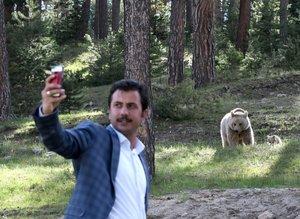 Kars'ta şehre inen ayılarla selfie yarışı