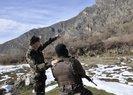ÇUKURCA'DA PKK'NIN KIŞ ÜSLENMESİNE DARBE