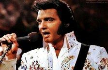 Elvis mezarda servet kazandı