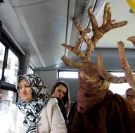 'Geyik' dağdan indi otobüse bindi
