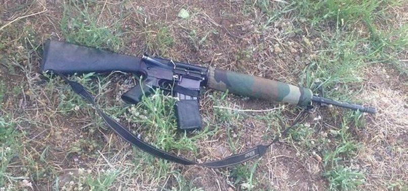 PKK'NIN GRUP SORUMLUSU ÖLDÜRÜLDÜ