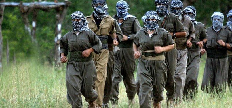 HAKKARİ'DE SIZMAYA ÇALIŞAN PKK'LILARI JETLER VURDU