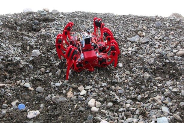 Bubi tuzaklarına Örümcek Robotlu çözüm