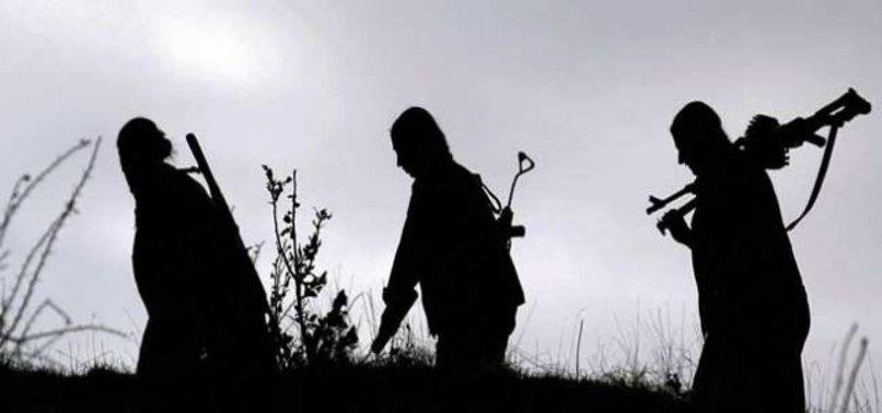 EŞİNE KIZIP, PKK'YA KOŞTU